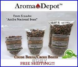 1 oz. Raw Cacao / Cocoa Beans Raw Chocolate Organic Arriba Nacional Bean ECUADOR