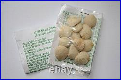 25 PACKS (300) Nuez de la India, original 100% GARANTIZADA, indian nut seed