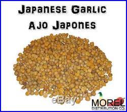 Ajo Japones (japanese Garlic) // Weights 1 Lb, 2 Lbs, 5 Lbs 10 Lbs, & 20 Lbs