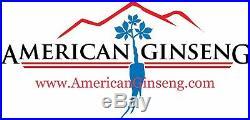 Fresh Certified Wild American Ginseng 1 lb (16oz) VAT