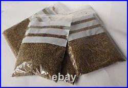 Moroccan Wormwood Artemisia Vulgaris Cleanse Anti Parasite Absinthium Tea Herb
