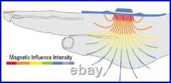 Multi-Pulsar Magnetic combo pulser