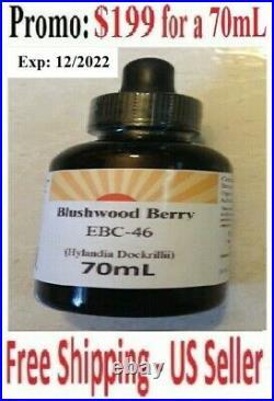 Organic Blushwood Berry Seed Hylandia Dockrillii Sublingual EBC46 Tincture 70mL