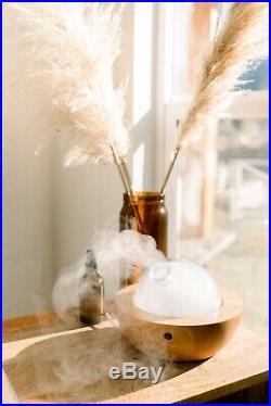 Young Living Essentials Oils Aria Ultrasonic Diffuser